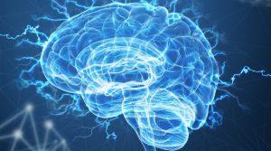 Šta je neuroplastičnost?